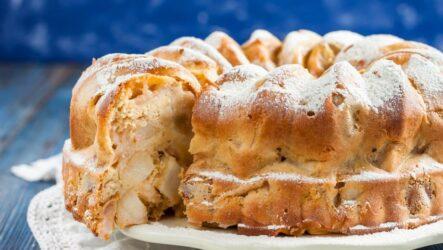 Самый вкусный яблочный пирог (шарлотка): в микроволновке и в духовке
