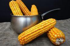 Как и сколько варить кукурузу?