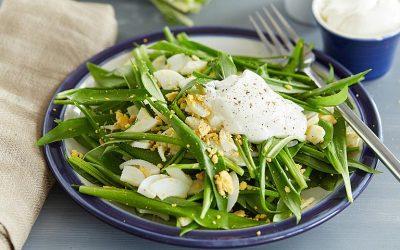 Салаты из черемши с яйцом: 8 рецептов