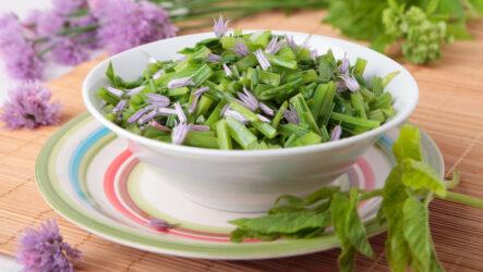 Салат из сныти: 8 рецептов