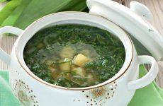 Суп из черемши: 5 рецептов