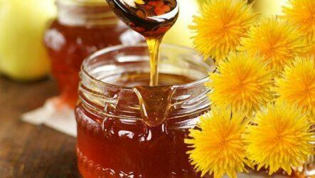 Варенье из цветков одуванчиков: 7 солнечных рецептов