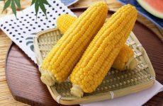 Как приготовить кукурузу в початках: 8 рецептов + бонус