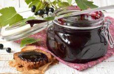 Варенье из черной смородины: 7 витаминных рецептов