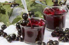 Желе из черной смородины: 8 простых рецептов