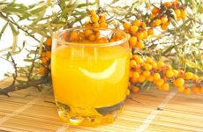 Сок из облепихи на зиму: 6 полезных рецептов