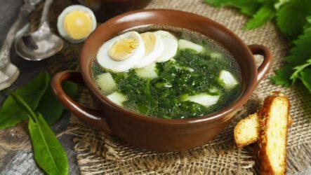Зеленый суп со щавелем: 9 полезных рецептов