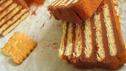 Торт без выпечки со сгущенкой: 8 сладких рецептов