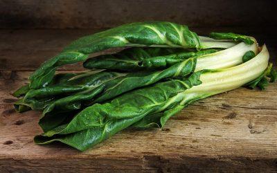 Что приготовить из мангольда: 8 интересных рецептов
