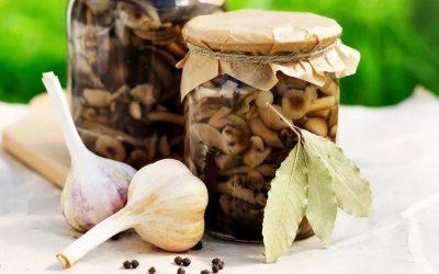 Опята с чесноком на зиму — 7 проверенных рецептов