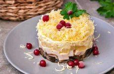 Куриный салат с ананасом слоями — 6 любимых рецептов с фото