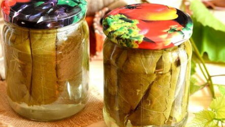 Листья для долмы на зиму — 6 рецептов домашних заготовок