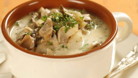 Грибовница из белых грибов — 6 сытных домашних рецептов