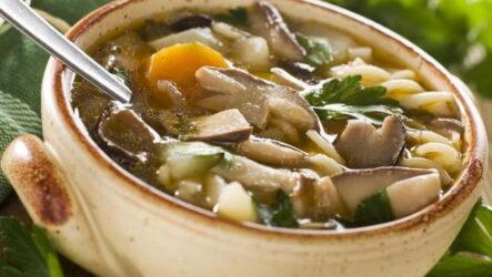 Грибовница из маслят — 7 отличных сытных рецептов к обеду