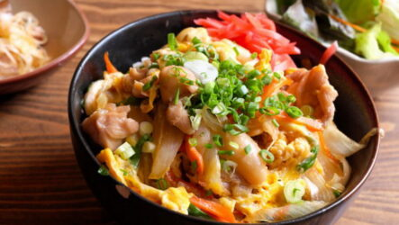Оякодон — 6 рецептов, как приготовить омлет с курицей по-японски