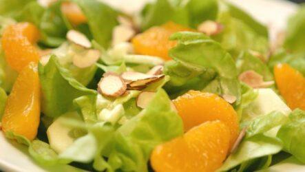 Салат с мандаринами — 10 вкуснейших рецептов к празднику