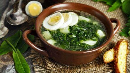 Щи с яйцом — 7 рецептов с зеленью