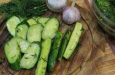 Малосольные огурцы с чесноком — 7 ароматных рецептов
