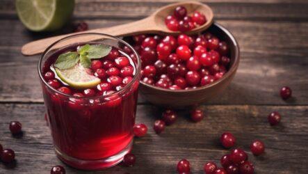 Домашний морс из клюквы — 7 рецептов витаминного напитка