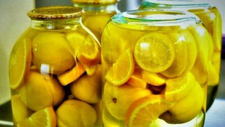 Компоты с лимоном на зиму — 6 разнообразных рецептов