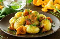 Лисички с картошкой — 8 рецептов с луком, сметаной