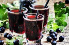 Морс из черной смородины — 7 рецептов с зарядом витаминов