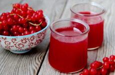 Морс из красной смородины — 6 витаминных фото-рецептов