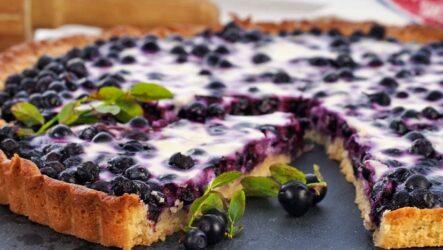 Черничный пирог со сметанной заливкой — 7 любимых рецептов