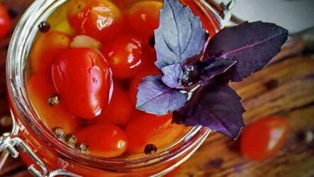 Помидоры с базиликом на зиму — 6 проверенных рецептов с фото